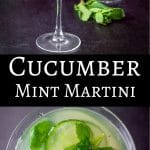 This exquisitely cool cucumber mint martini is so delicious! It's slightly sweet but so refreshing!! Grab your muddler and mint and make the magic happen!