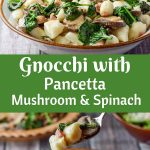 This Gnocchi with Pancetta, Mushroom and Spinach recipe is like a dream come true. The saltness of the pancetta melds perfectly with the soft gnocchi and vegetables. It is so delicious that your guests will think you profusely when you serve it to them!
