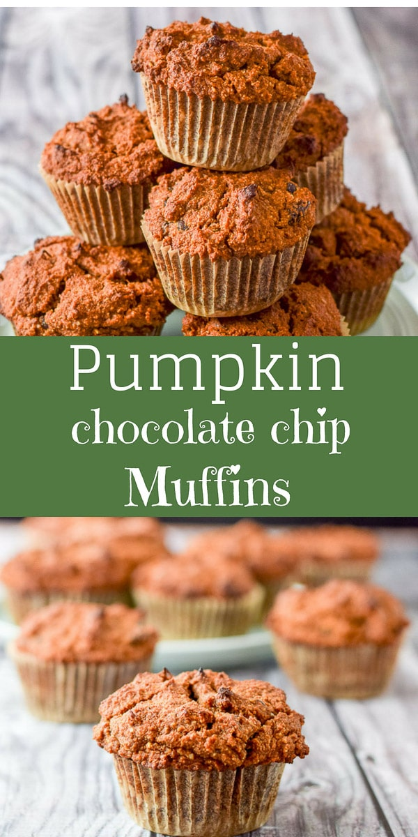 These Healthy Pumpkin Chocolate Chip muffins are so delicious that you will be happy. Happy that they are delicious but also happy because they are pumpkiny!! Yum! #pumpkinmuffins #muffins #chocolatechip #dishesdelish #dishesdelishrecipes https://ddel.co/pummuff