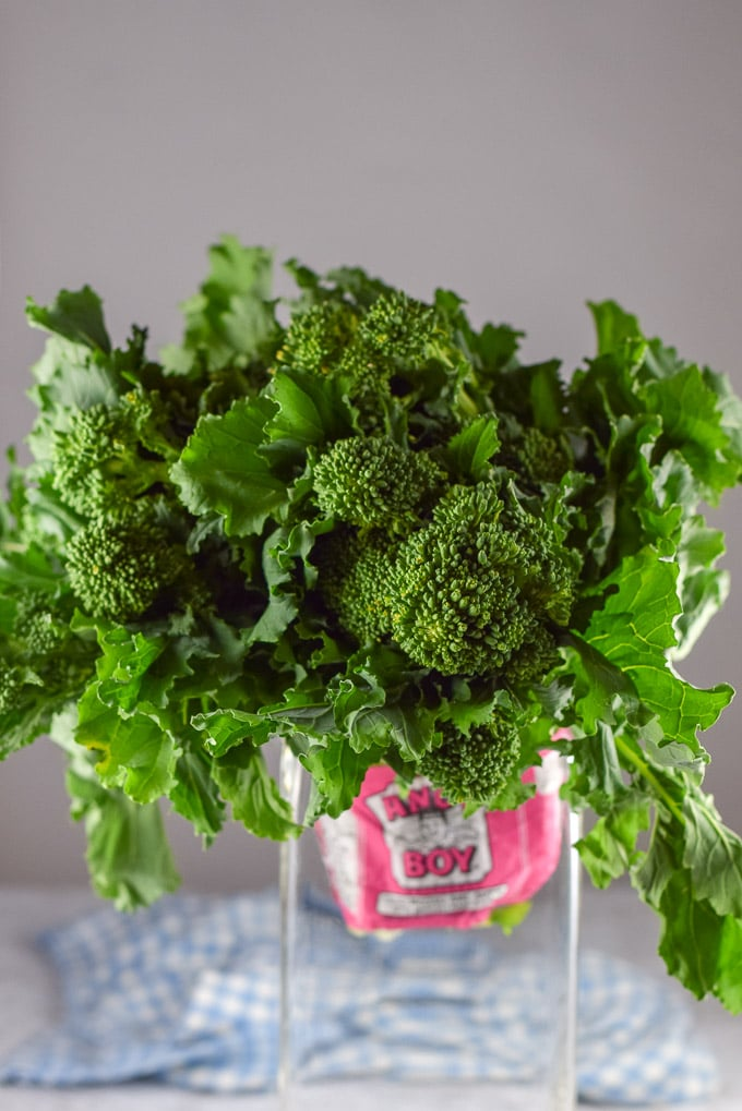 Head of broccoli rabe in a vase looking all flowery and pretty