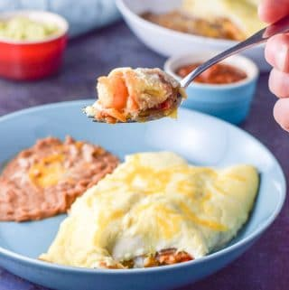 Shrimp Enchiladas | Sour Cream Sauce