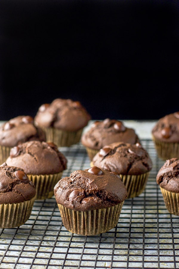 Double chocolate muffins cooling on a wire rack