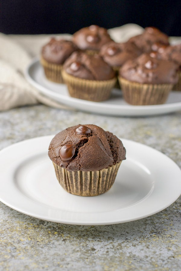 One of the double chocolate muffins on a plate